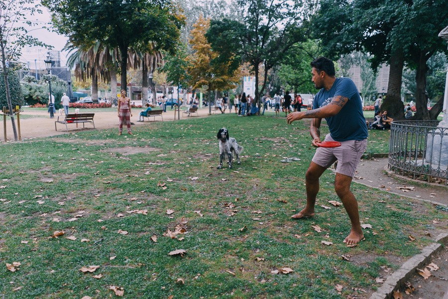 Man and woman playing with their dog with frisbee at a park in Barcelona, Spain, photography by Ilias Antoniou